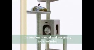Armarkat-Classical-Cat-Tree-Gym-Furniture-B6802