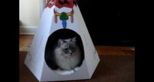 Beds-for-Cats-The-Loyal-Luxe-Native-American-Teepee-Floppycats