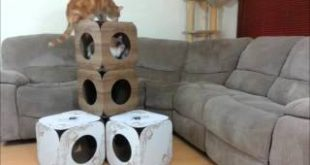 Cat-Tower-Boxes