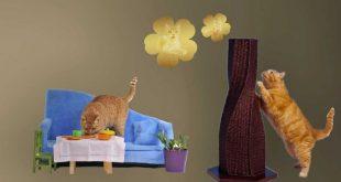 Fancy-Cat-Furniture
