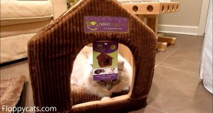 Luxury-Cat-Beds-Ragdoll-Cats-Receive-Neko-Nappers-Pet-House-and-Sleeping-Bag-Floppycats