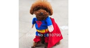 Pet-Dog-Puppy-Cotton-Superman-Clothes-Halloween-Apparel-Costumes-Outfit-Suit-Cat-Dog-Clothing