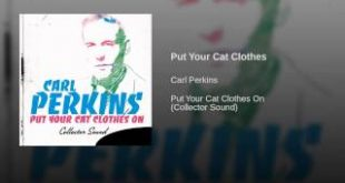 Put-Your-Cat-Clothes