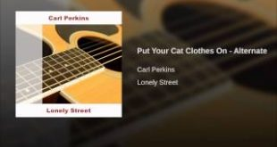Put-Your-Cat-Clothes-On-Alternate