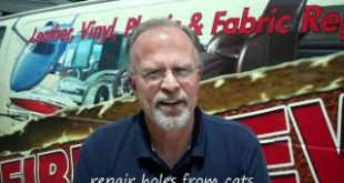 Spartanburg-Furniture-Cleaners-Repair-Cat-Damaged-Furniture-Spartanburg-864-316-9275