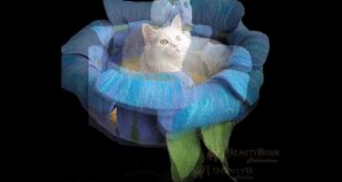 Beautyburm Collection Felt houses for pets, cat beds wool,coccon wool